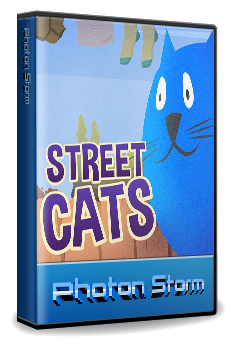 streetcats-large-case