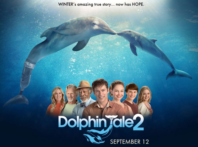 dolphin-tale2